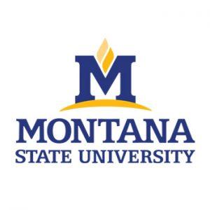 logo-montana-state